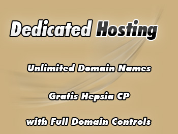 Cut-rate dedicated servers hosting service
